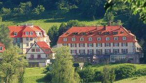 Rehakliniken Hessen: Reha-Kliniken Küppelsmühle in Bad Orb