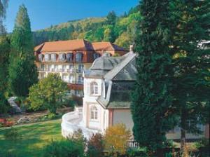Rehakliniken Hessen: Klinik am Park in Bad Schwalbach