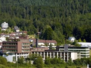 Rehaklinik Deutschland: Heinrich-Sommer-Klinik in Bad Wildbad Baden-Württemberg