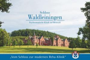 Rehaklinik Baden-Württemberg: Klinik Schloss Waldleiningen in Mudau
