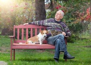 Ratgeber: Im eigenen Haus, dem eigenen Garten auch im hohen Alter noch mit Würde